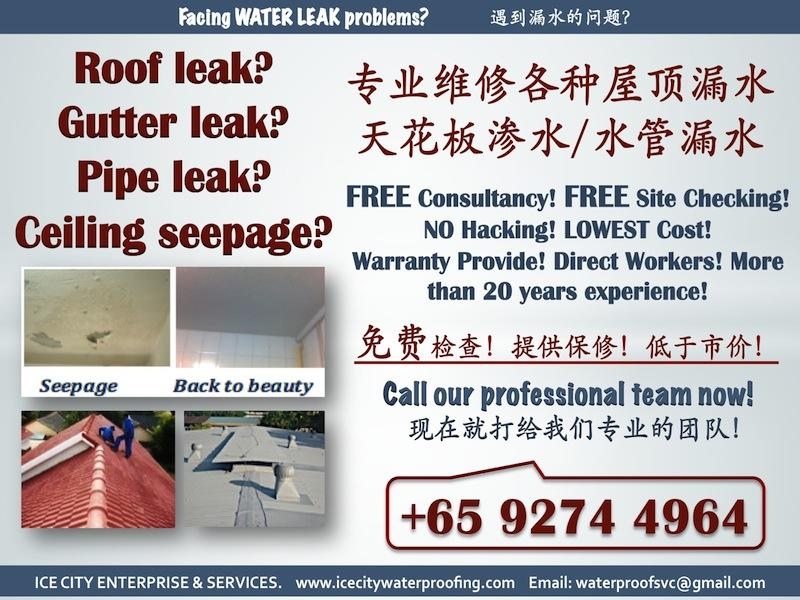 FREE check! Water Leakage repair services! Roof/ceiling