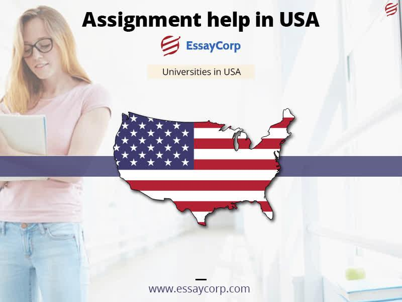 Assignment help us