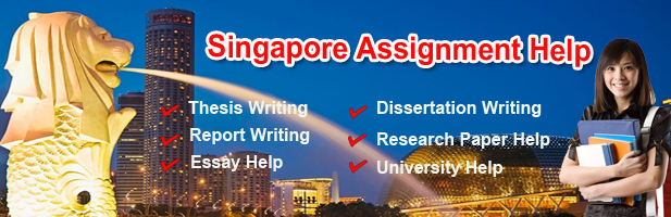 Assignment writing service singapore