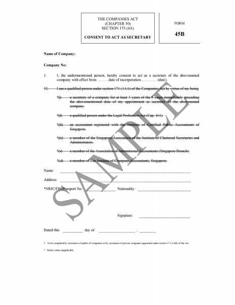 Diy company secretarial compliance templates singapore classifieds altavistaventures Choice Image