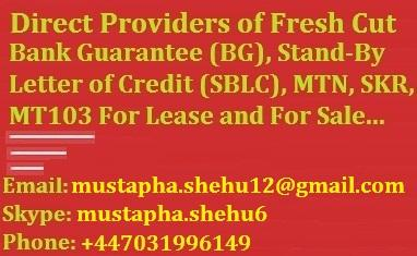 Providers of Fresh Cut BG, SBLC and MTN • Singapore Classifieds